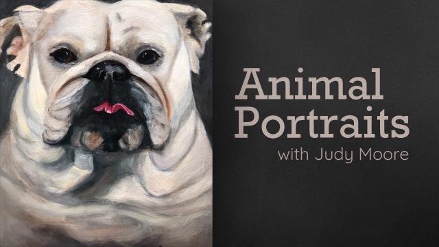 Judy Moore-Animal Portraits